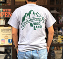BUDDY オリジナル WOODLAND COLORADO SPRINGS Tシャツ
